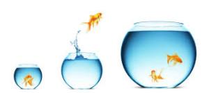 Det krävs mod och tålamod att våga sträva efter varaktig förändring. Rätt miljö kan vara avgörande.
